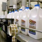 Kilgus-Farmstead-Milk_3